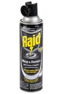 raid-wasp-hornet-14oz