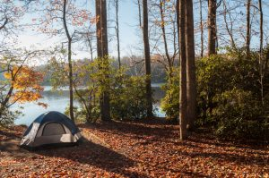 Camping tent in the woods by the lakeside