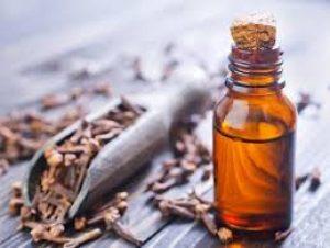 essential oil for ticks